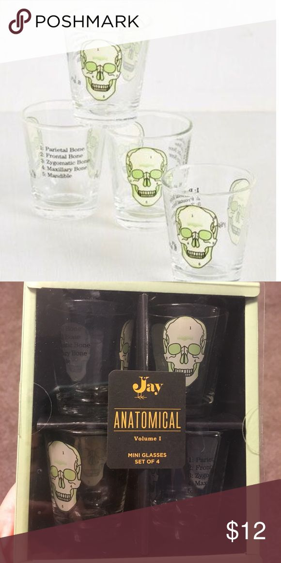 Skull Shot Glasses Set of Four Sold by Modcloth. Never opened or used. Modcloth Other