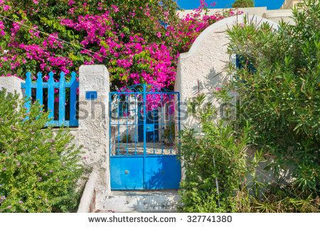 Picturesque Greek house with beautiful plants and growing in garden Bouganvillea.Santorini(Thira)island.Cyclades.Greece.Europe.