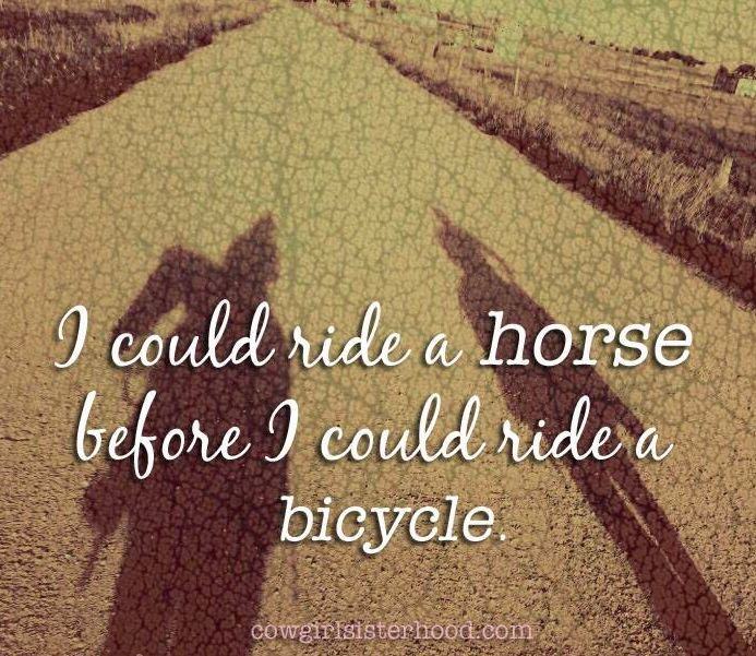 Love Finds You Quote: 17 Best Images About Horse Quotes On Pinterest