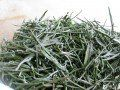 Substitute Dried Rosemary for Fresh: How to Dry Rosemary