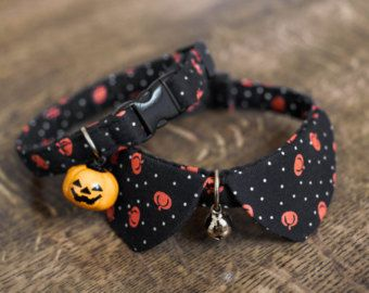 The Basic Style for cat collar tiny dog collar small by HMbyZoey