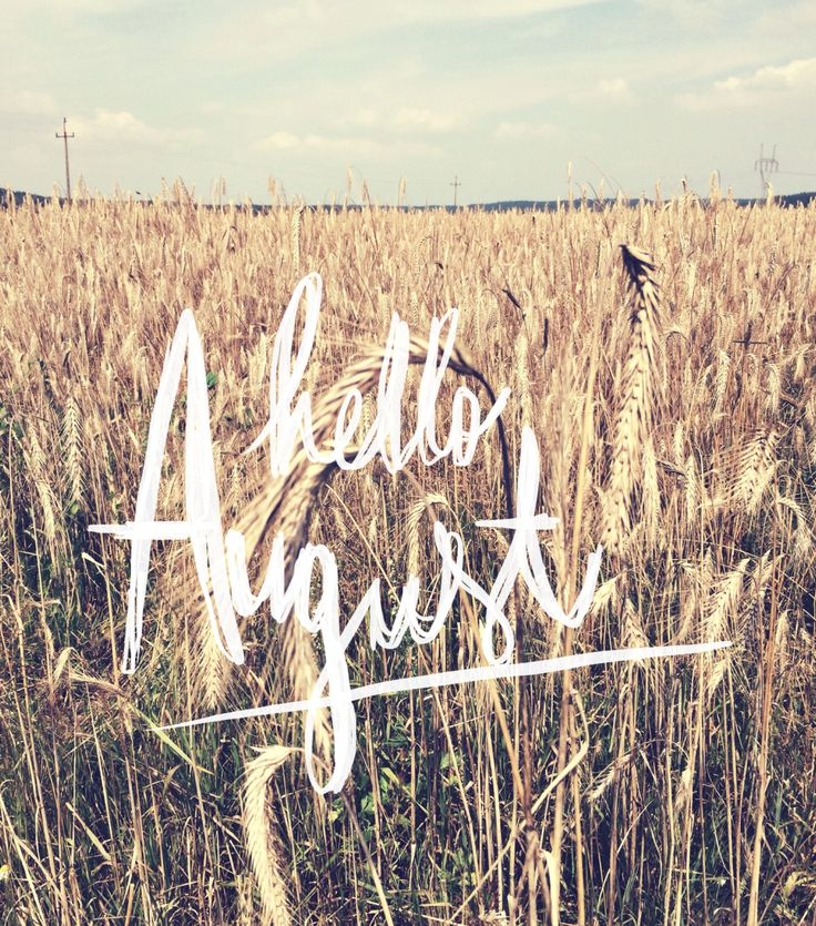 Summer's nearly over and fall's just around the corner. Hello August. We're glad you're here.