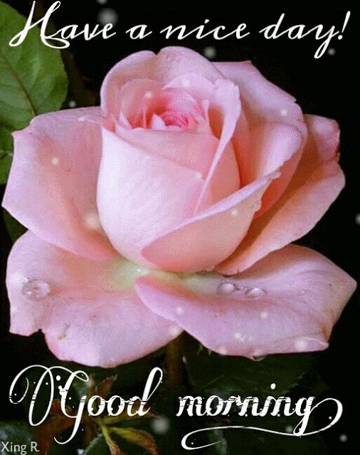 Have A Nice Day! Good Morning