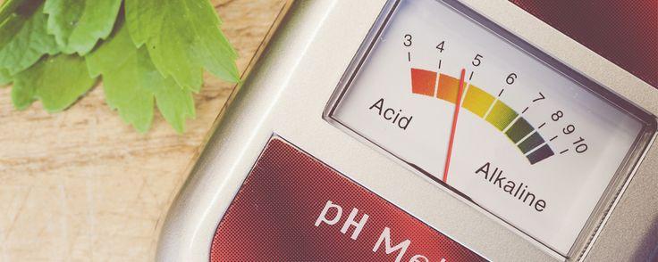 Acid rain. Acid fast. Acid test. Okay, so what exactly is an acid?