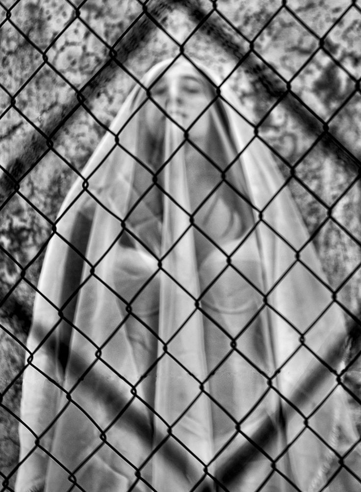 Fotografía: Lourdes Sánchez   5º Trimestre