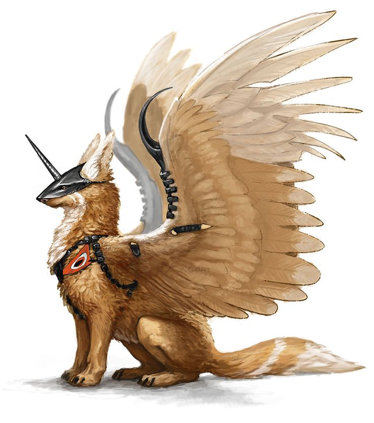 Sentry's Death,apprentice,male,brother to Sky Light, Sunset Death,Veera Wisdom,Wise Riot and Moon Ray.mentor is Thundering Wind,loyal,cunning and brave,this is a wolf to be reckoned with.(me)