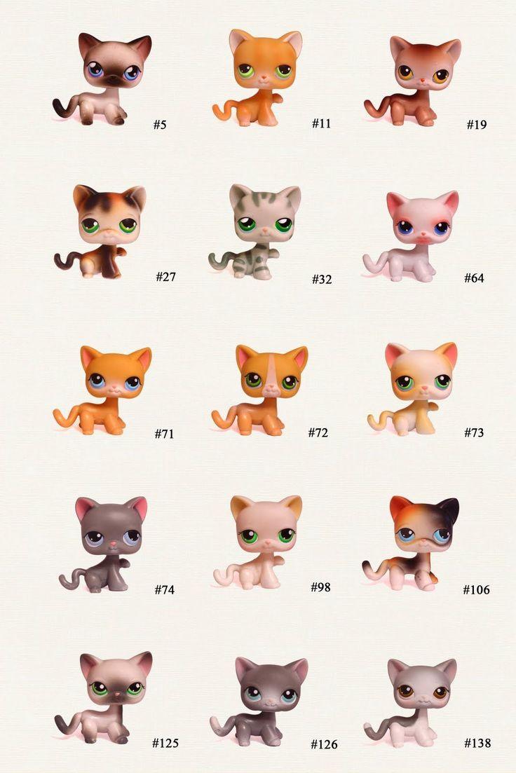 LPs Shorthair Cats   Sonntag, 29. November 2009