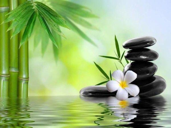 Wellness steine wallpaper  37 best ISTOCK images on Pinterest | Zen gardens, Flower wallpaper ...