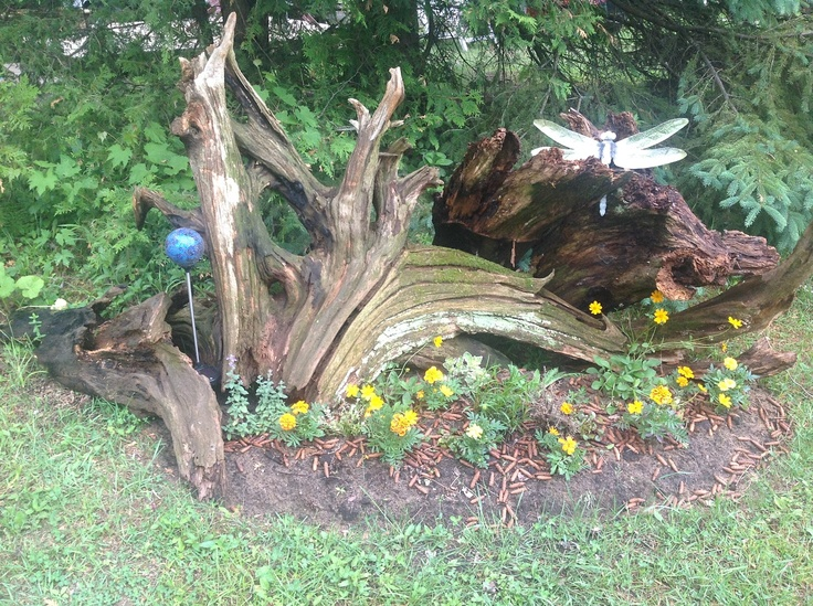 Landscaping With Driftwood : Driftwood in the garden this years project a