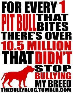Stop Bullying my Breed.