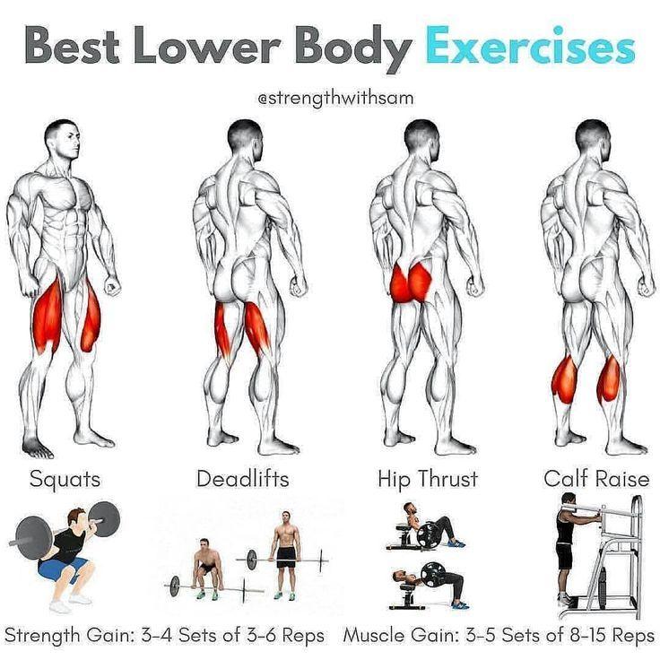 Steroide für Bulking – Bulking Stack von Marine Muscle