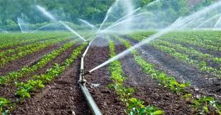 "research: Conceptual Growth Of ""Micro Irrigation System"" Glo..."