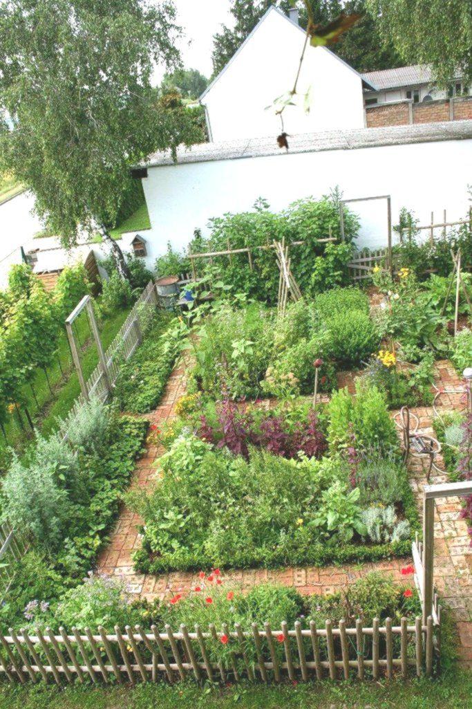 My Vegetable Kingdom Our Garden Our Cottage Garden In 2020 Cottage Garden Backyard Vegetable Gardens Vegetable Garden Design