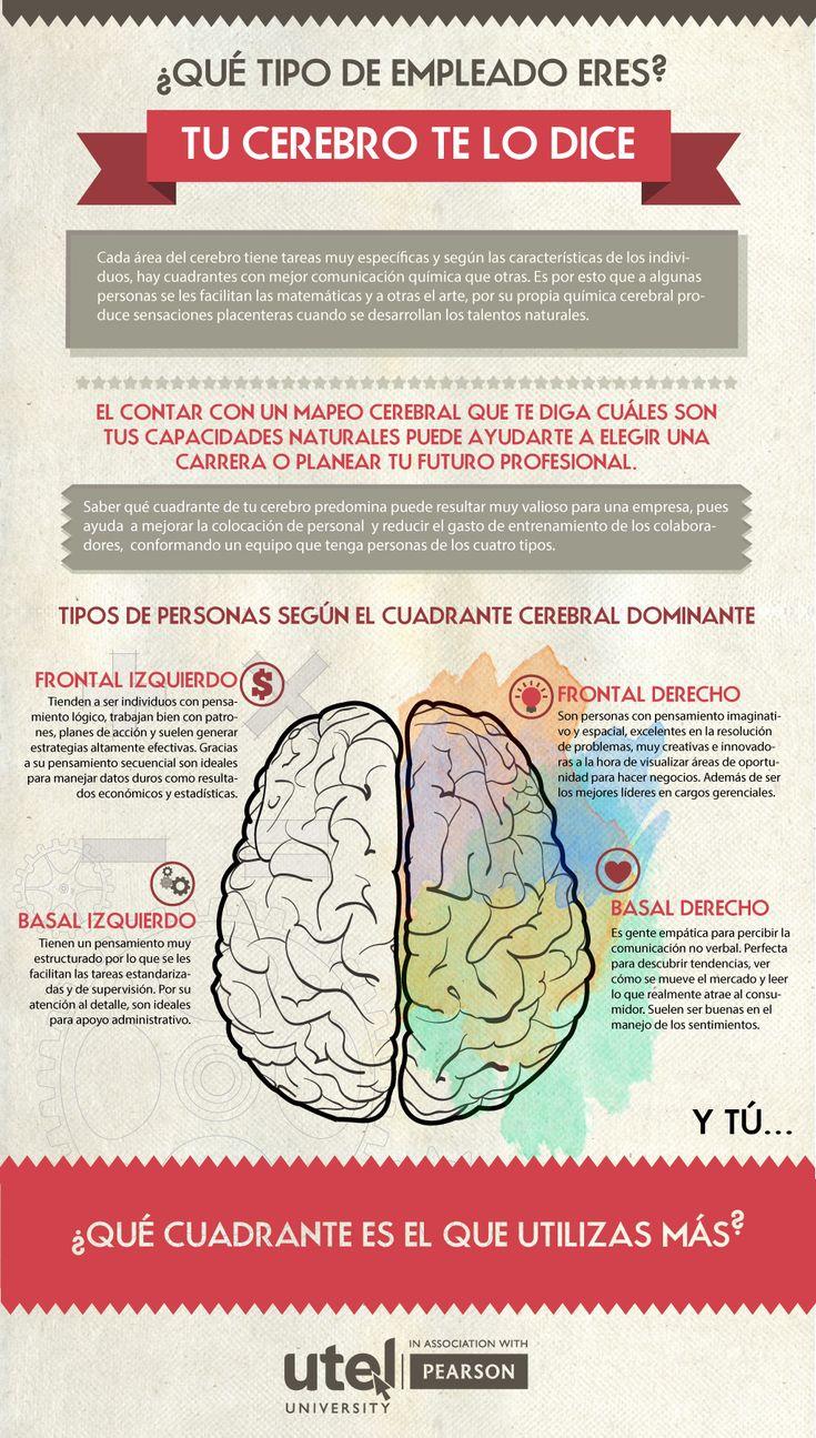 ¿Sabes qué tipo de #empleado eres? ¿No? no te preocupes y deja que tu #cerebro te lo diga. #Infografia #UTEL #CuadranteCerebral