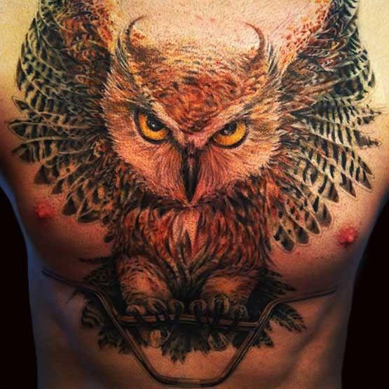 ಒ Tatuaje Pe Braț și Piept: 38 Best Owl And Lion Tattoos Images On Pinterest