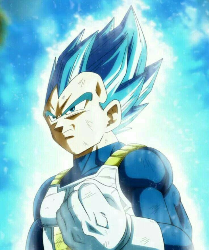Vegeta blue