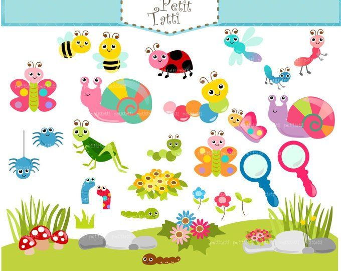 Cute Bugs Clip Art Insects Clipart Ladybug Snail Dragonfly Fly Bee Caterpillar Spider Instant Download Ydc131 Digitale Illustraties Illustraties Schattig