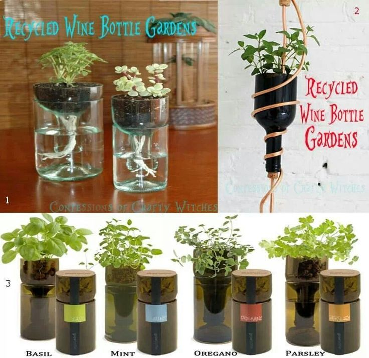 57 best earth day images on pinterest diy gardening and for Plastic bottle planter craft