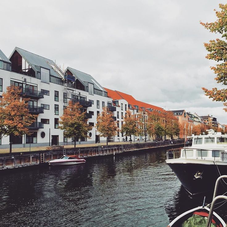 The leaves are beginning to change along the Christianhavns Kanal #autumn #copenhagen #copenhagenlife #findroommate