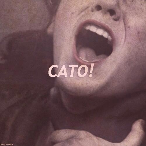 Cato The Younger Quotes: 17 Best Images About Cato Clove On Pinterest