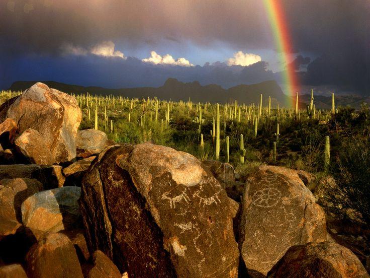 Saguaro National Park - 3693 South Old Spanish Trail Tucson Arizona 85730