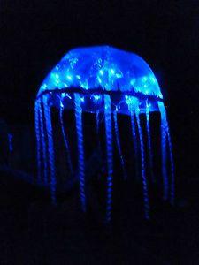 LOOK Festival Rave Fancy Dress Costume Jellyfish Fish Sea Umbrella Flashing LED | eBay