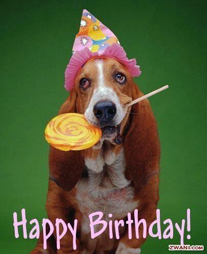 51 best Happy Birthday images – Happy Birthday Dog Card