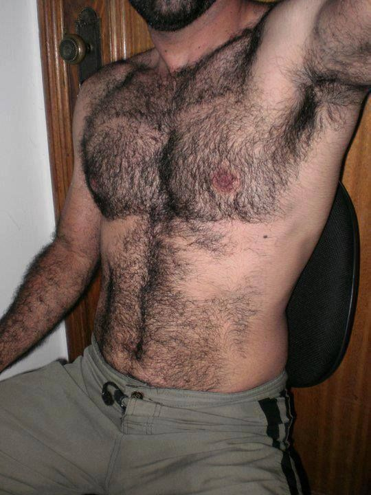 Pin On Hairy Chests-8555