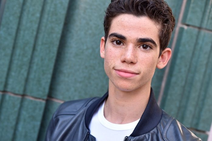 Learn Pretty Much Everything: Cameron Boyce Reveals Cool Facts About Himself During a 'Gamer's Guide' Twitter Chat