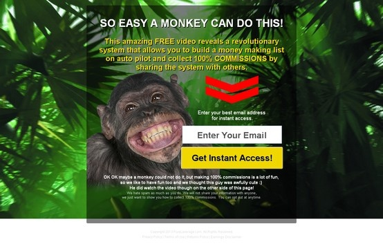 SO EASY A MONKEY CAN DO THIS! This amazing #FREE #video reveals a revolutionary system that allows you to build a #money making list on auto pilot and collect 100% COMMISSIONS by sharing the system with others. #onlinemarketingtips