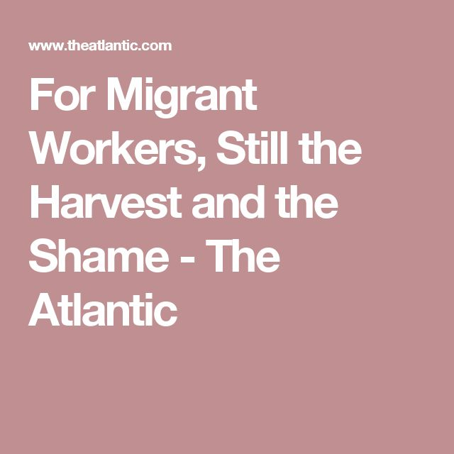 For Migrant Workers, Still the Harvest and the Shame - The Atlantic