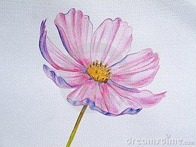 17 Best images about Art - Watercolor Pencil on Pinterest ...