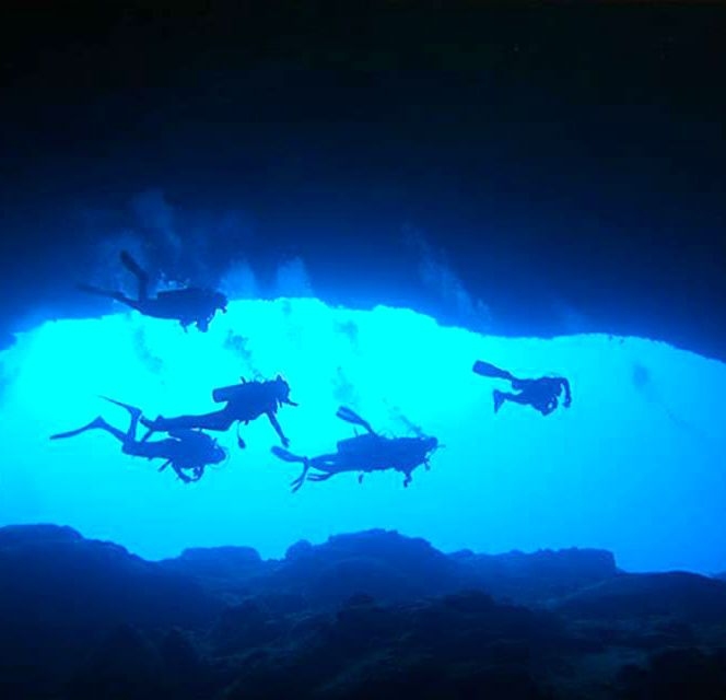 Stay at Small Hope Bay Lodge on Andros Island, Bahamas for diving and snorkeling excursions .