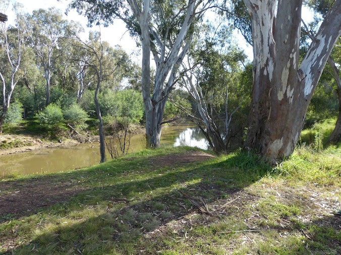 Cycle Rides around Shepparton include pedaling along the banks of the Goulburn River