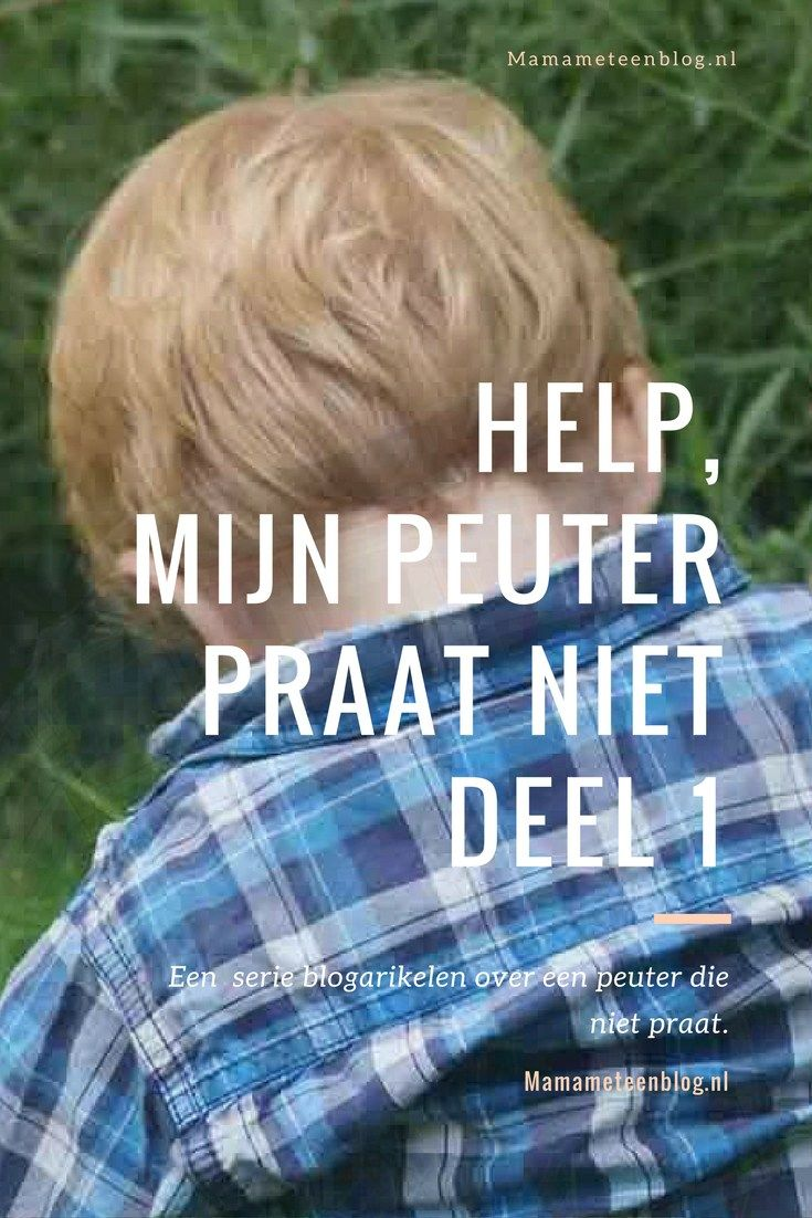 Mijn peuter praat niet deel 1, een serie artikelen over een peuter die niet praat. mamameteenblog.nl Peuter | Toddler | Spraak |