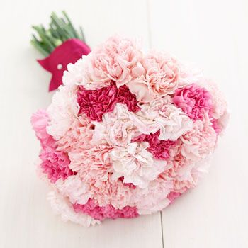 Another beautiful example of a bridal/bridesmaid bouquet of carnations. This simple yet elegant hand-tied bouquet consists of mixed pink carnations. Carnations are very affordable and are available year-round online at GrowersBox.com.