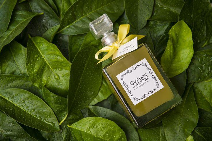 Il Limone - Splendido frutto / Lemon - Gorgeous fruit