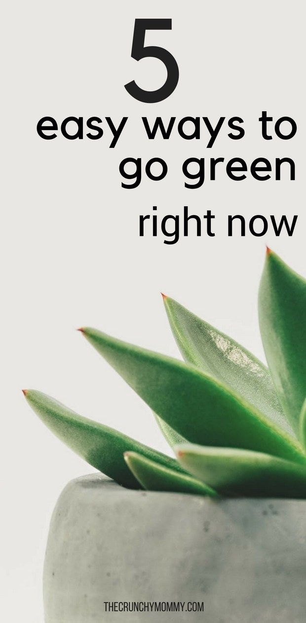 going green as a way of life essay Noahwriting is the top writing website  by gen1900 i have been going through some  i did not have exactly a way of life but the bee amazed me and the.