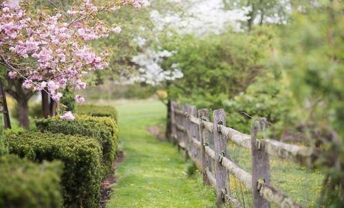 My Fotolog Philadelphia Magic Gardens Garden Nursery Farm Gardens