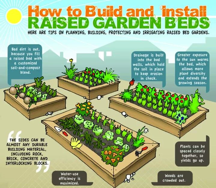 Raised Garden Beds · How To BuildHow ...