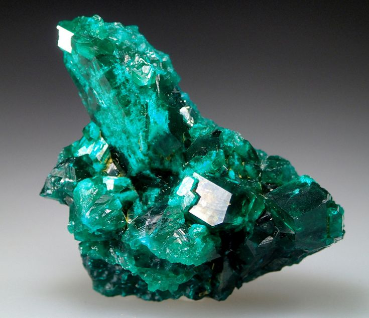 Kaokoveld, Kaokoveld Plateau, Kunene Region, Namibia - This unique dioptase specimen comes from a recent discovery handled by Bryan Lees of Collectors edge, I was able to secure a number of interesting pieces from him almost two years ago. The terminations are sharp and gemmy exhibiting a typical electric green flash only found in the higher quality variants that the Kaokoveld produced.  The body of the crystals features a rare pale green component that confirms its provenance.  The…