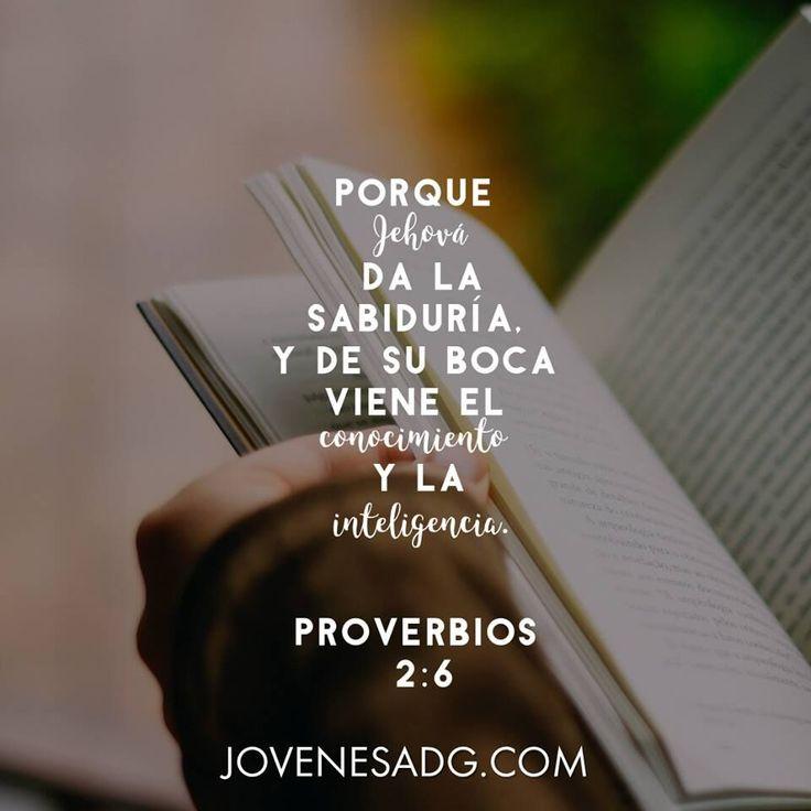 CAMINANDO EN SABIDURIA - Semana 1/Martes    Lectura: Proverbios 2:1-6  Devocional: Proverbios 2:6    #JovenesADG #ComunidadADG #CaminandoenSabiduria #Sabiduría #Proverbios #EstudiosBiblicosparaJovenes #AmaaDiosGrandemente