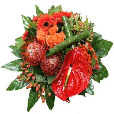 Boeket 'Lovely Red'  Prachtig boeket in rode en zalm tinten. Het boeket is op groepen gebonden waardoor de kleurschakering prachtig uitkomt met het opgerolde bald erbij. In dit boeket zijn o.a. anthurium rozen gerbera's nutans en hypericum verwerkt.  EUR 31.95  Meer informatie  http://ift.tt/2948O3N #bloemen