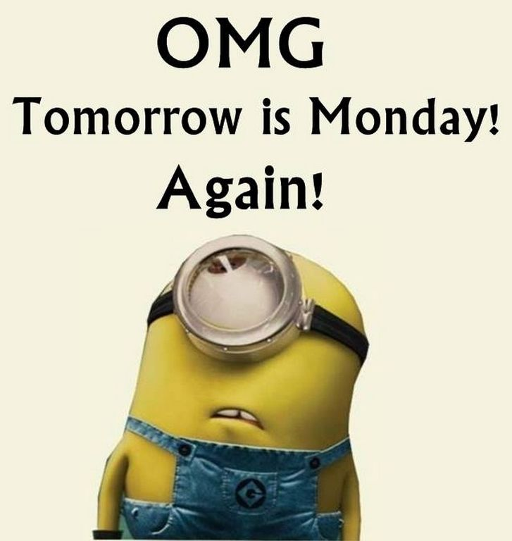 Minion Monday Quotes: Best 20+ Funny Monday Quotes Ideas On Pinterest