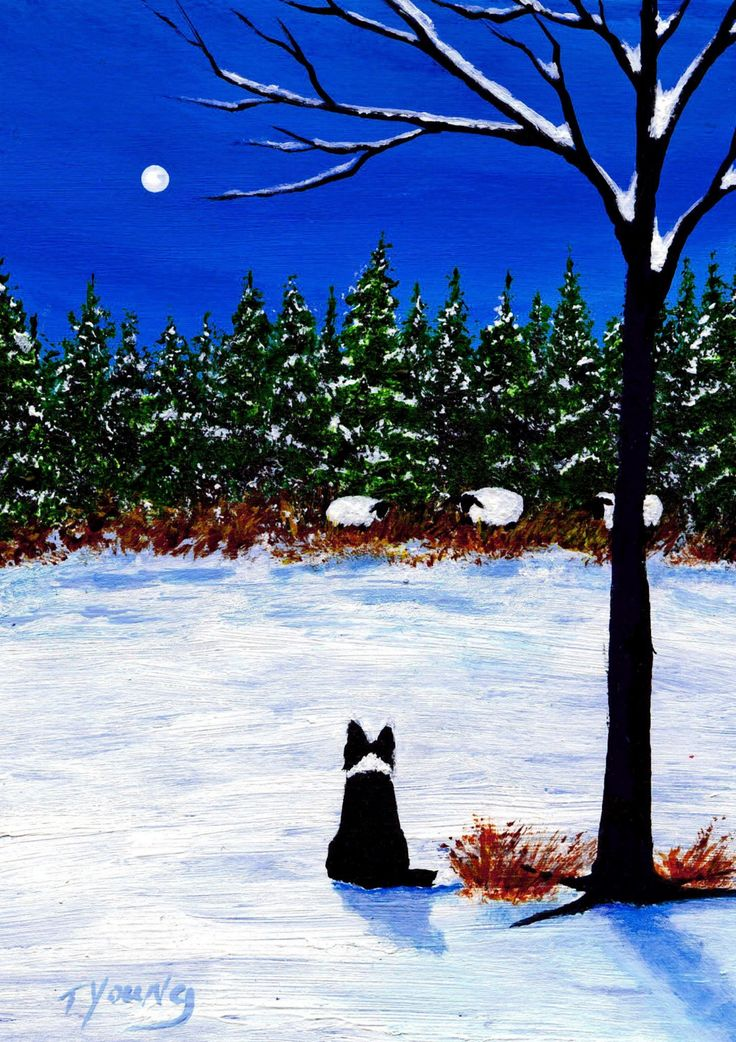 Border Collie Forest Edge reproduction art print of Todd Young painting.