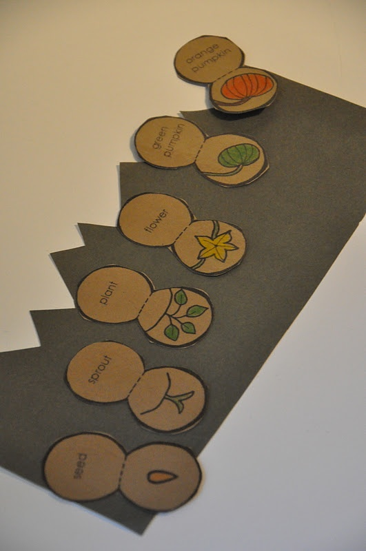 pumpkin patch parable coloring pages - photo #32