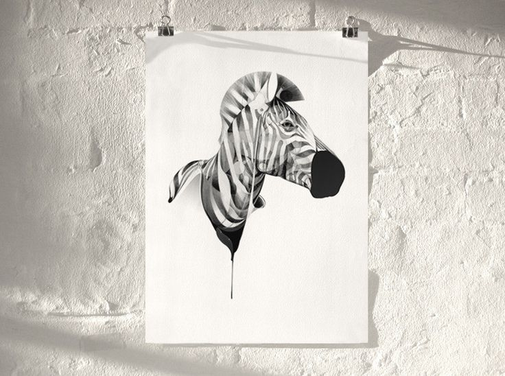 Zebra 01 | Artist Proof