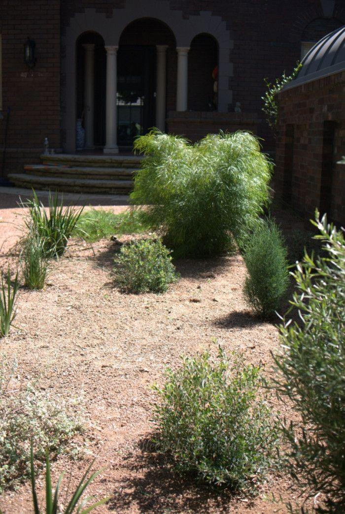 Garden Design: Centennial Park