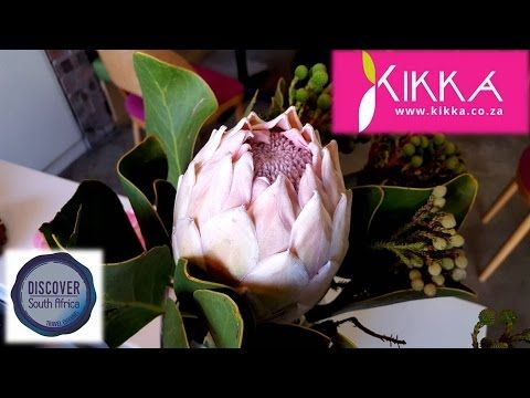 Kikka Coffee Shops and Deli, Paarl - Discover South Africa Travel Channel