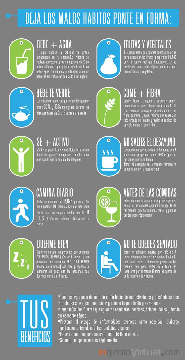 ingeniovirtual.com - Infografía sobre buenos hábitos para la salud.